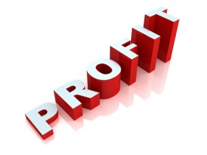 profit-300x225
